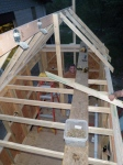 """Rafters are set at 24"""" on center to accomodate the plywood roofing"""